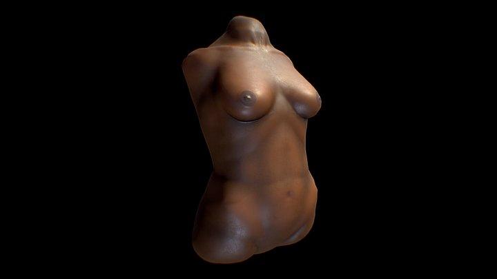Female torso study 3D Model