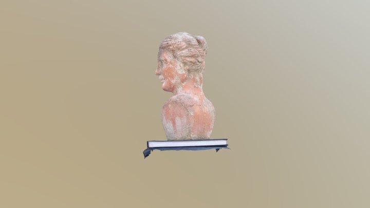 Bust Comparison - Zephyr (Default) 3D Model