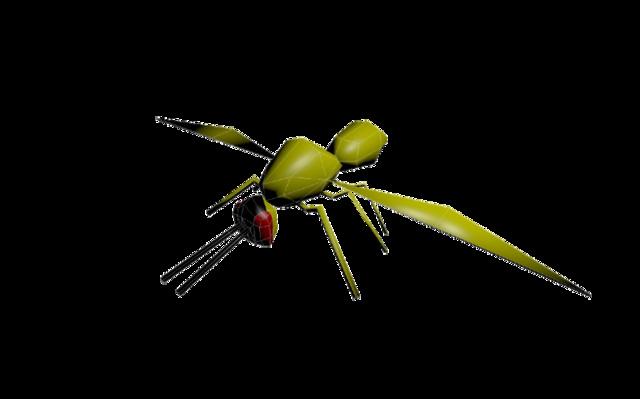 Wasp.blend 3D Model