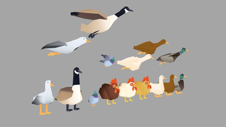 Common birds 3D Model