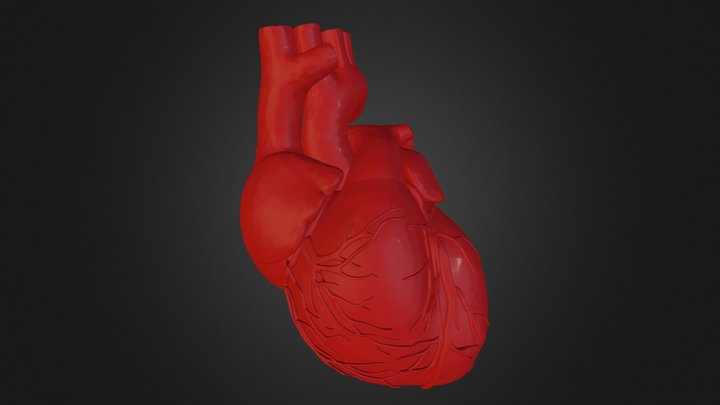 Heart (collection of thunthu) 3D Model