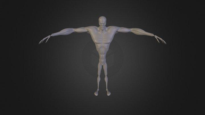 Ninja skeleton 3D Model