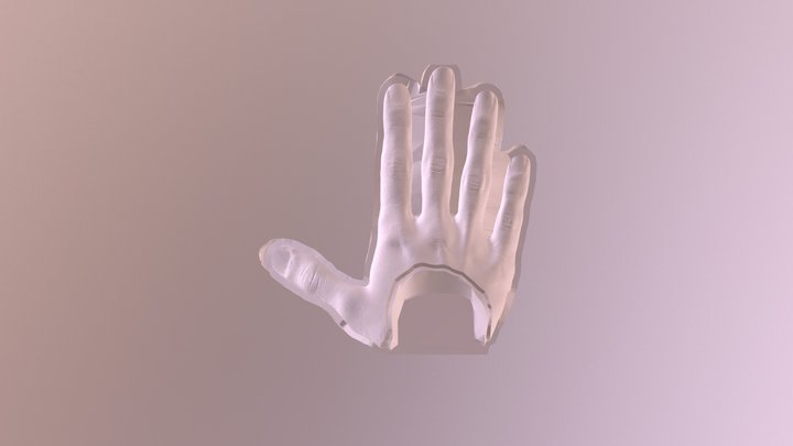 Top Mold for Prosthetic Hand Silicone Skin 3D Model