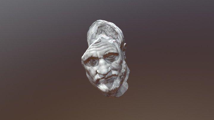 Beard Disp 3D Model