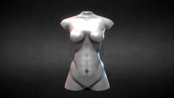 Chest Study Female 3D Model
