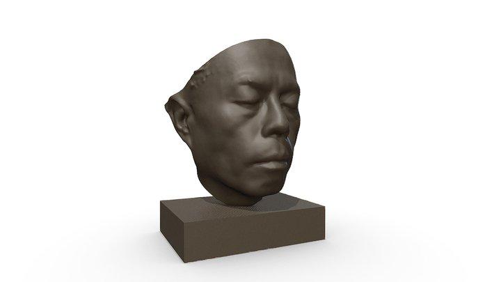 Dave face 3D Model