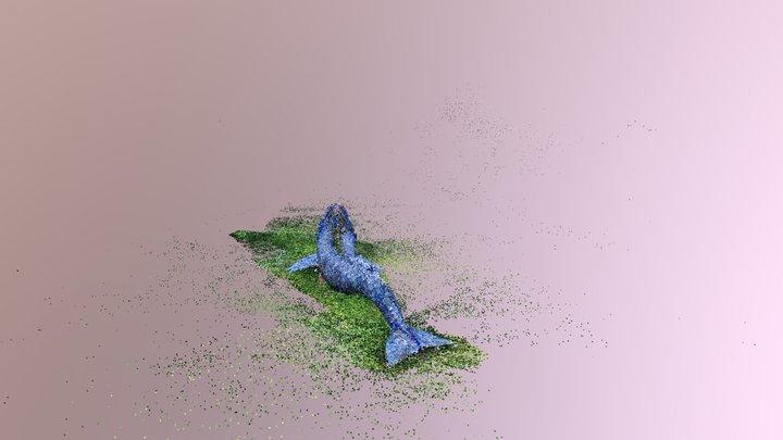 Colmap model: chris-156 whale; 3D Model