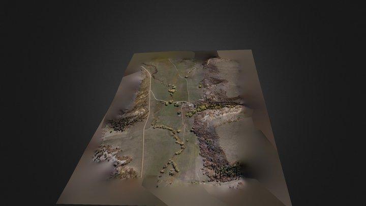 Home_SubAOI_New 3D Model
