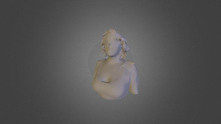 flori 3D Model