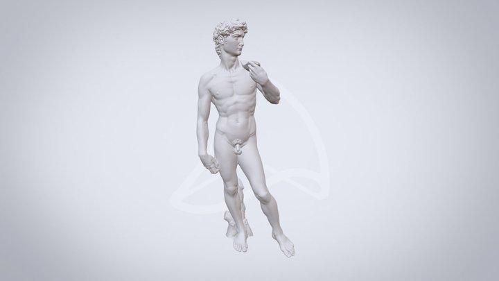 David by Michelangelo 3D Model