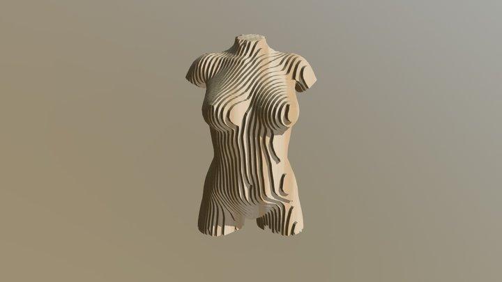 Full Frontal Torso 3D Model