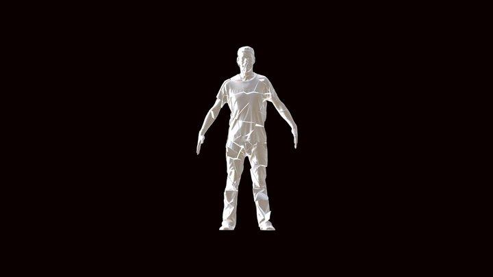 Fractured 3D Model