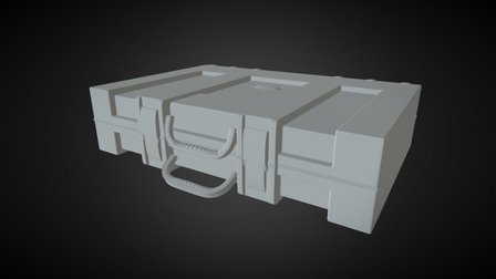 Weapon Case 3D Model
