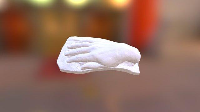 Слепок руки С.Д. Меркурова 3D Model