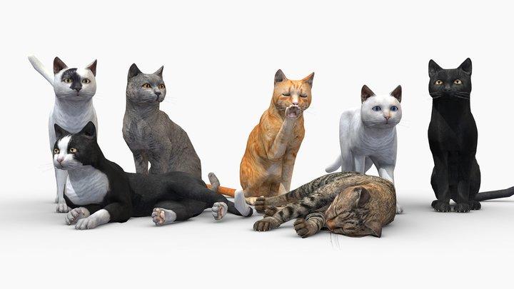 Cats pack 3D Model