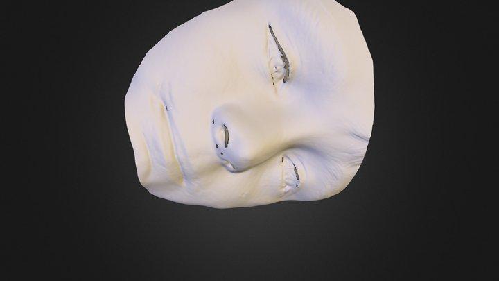 100324 3D Model