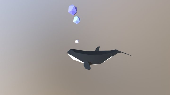 Killerwhale 3D Model