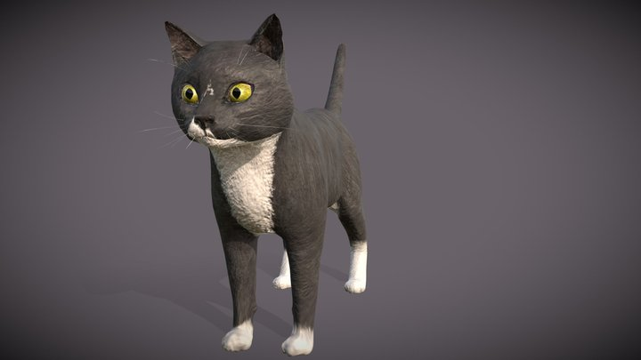 My Cat Modeled 3D Model