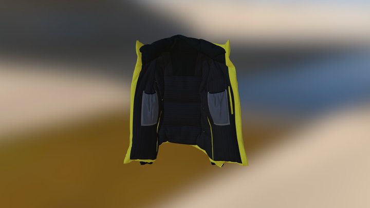 downcoat 3D Model