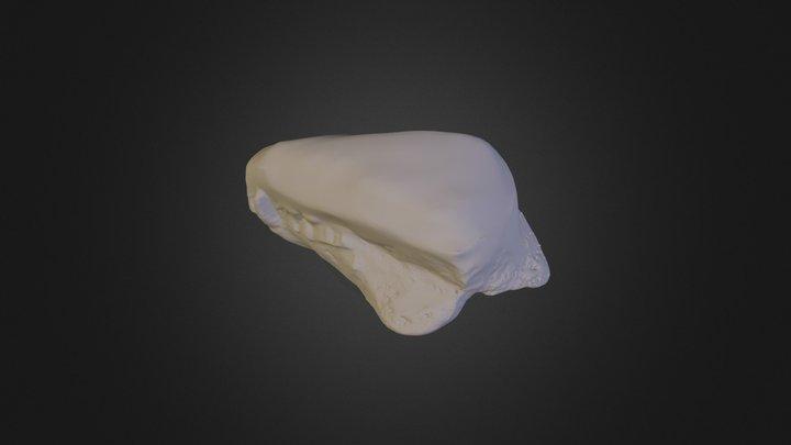 2117 3D Model