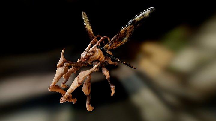 Moth Creature 3D Model
