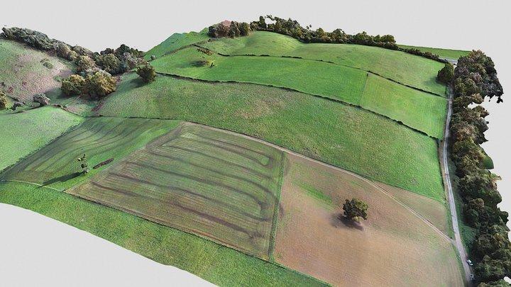 Bilta Garbi site Ostabat 3D Model