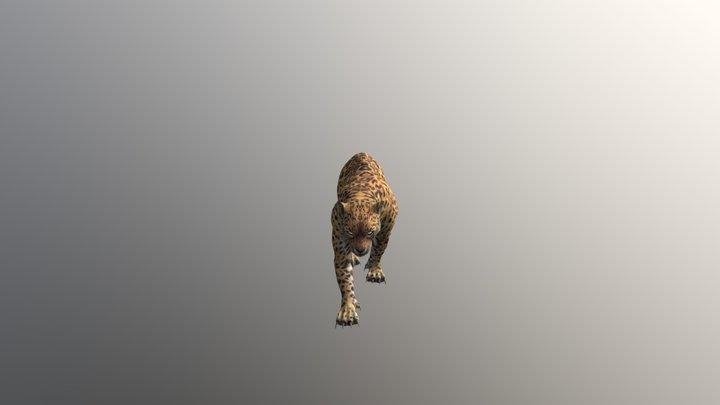 Leopard001-walk01 3D Model