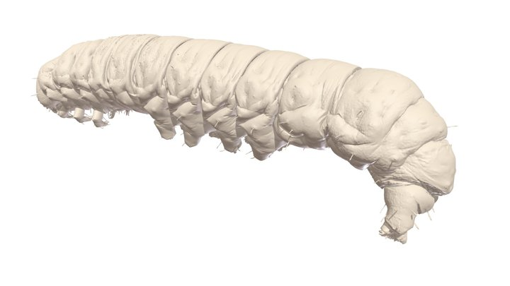 High Resolution CT Scan of Caterpillar 3D Model