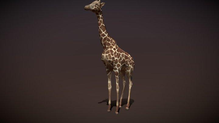 Safari animals - Giraffe 3D Model
