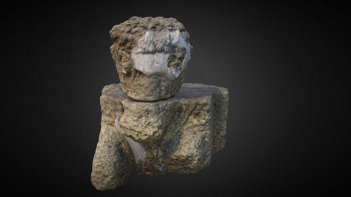 Prótomo de toro 3D Model