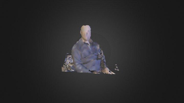 scene.ply 3D Model