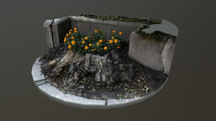 Stumps of the Twin Cities: St Paul, MN 3D Model