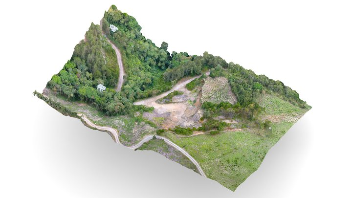 Quarry and sustainable andean forest 08.11.2020 3D Model