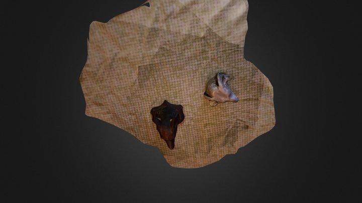 erg-mesh 3D Model