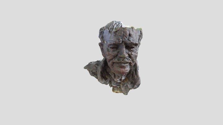DR JOHN DOWIE AM BUST 3D Model