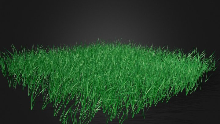 Animated Patch of Grass 3D Model