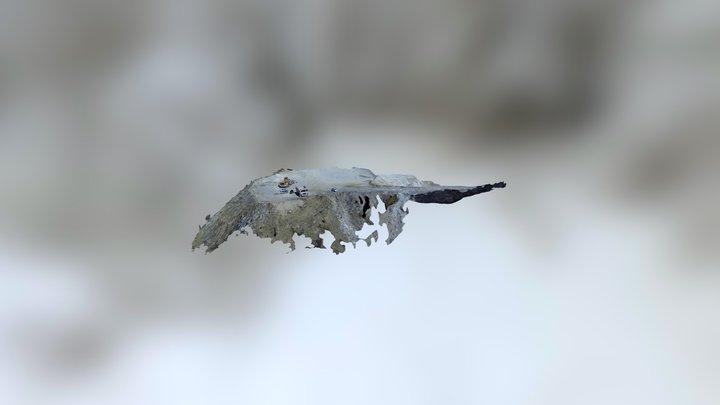 Cava Collepedrino 1 3D Model