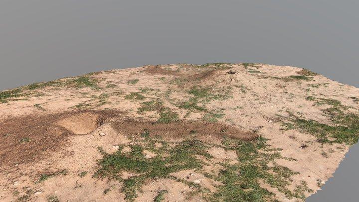 Prairie Dog Holes Texas 3D Model