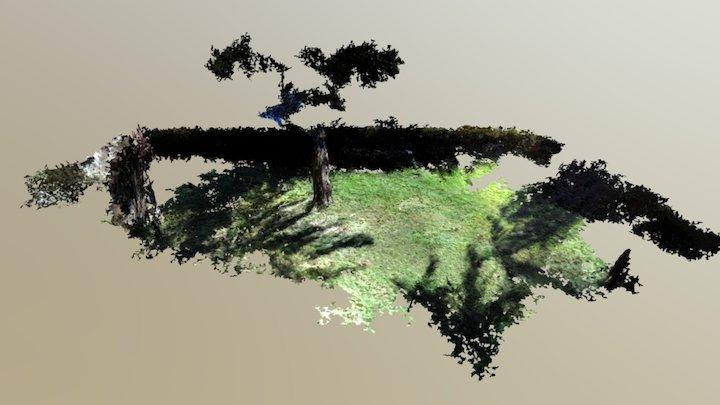 Garden - Panther 3D Model