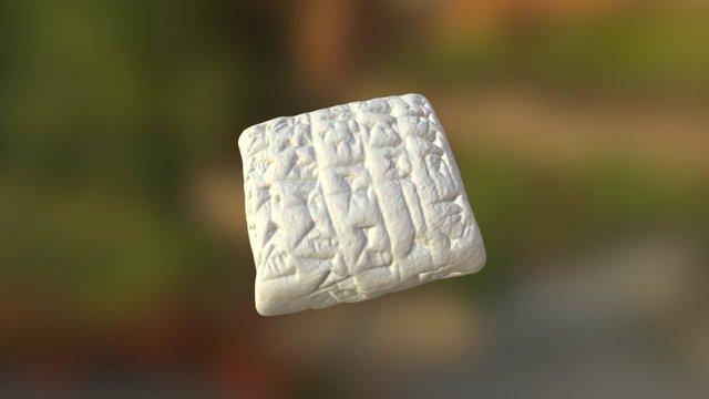 Cuneiform: Dead Sheep (32) 3D Model