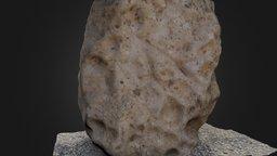 Insculturas de la Bastida I 3D Model