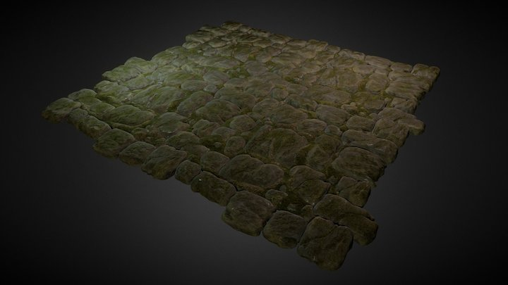 Rocky Ground with Moss 3D Model