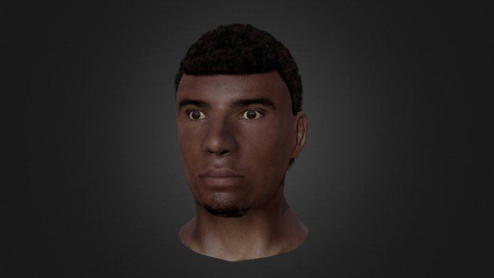 Textured Male Human Head 3D Model