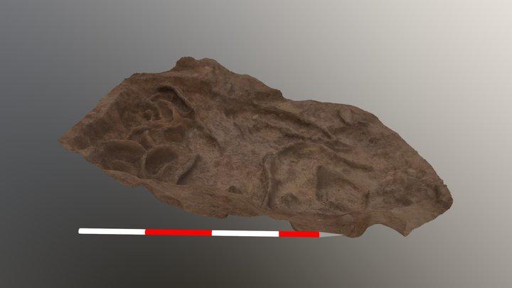 SH2018 Potential feature 3D Model