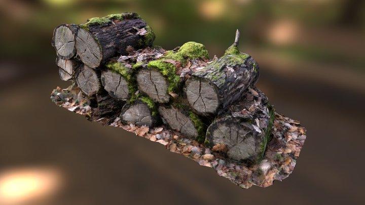 N011 Wood logs 3D Model