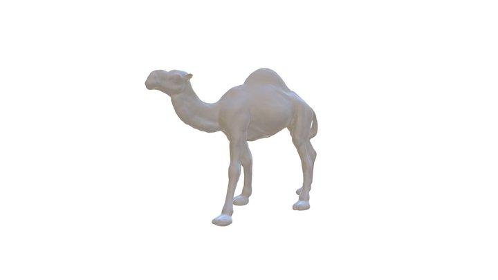 Camel free 3d model 3D Model