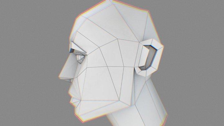 Low Poly Head 3D Model