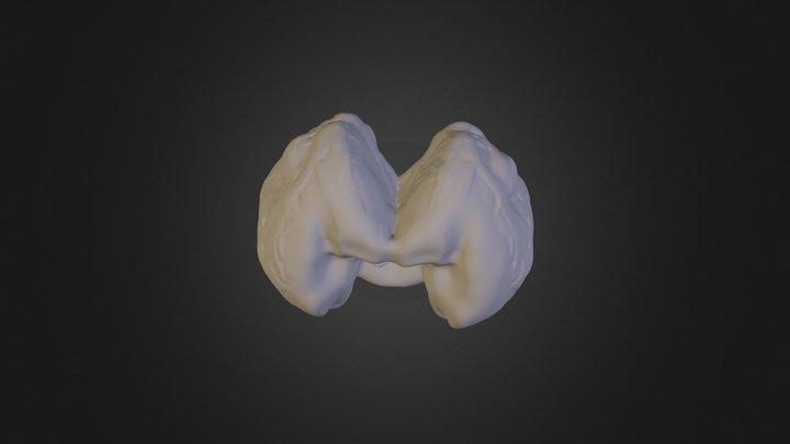 meshy 2 3D Model