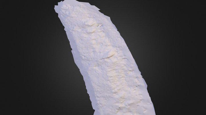 Cass Sliding Face 3D Model