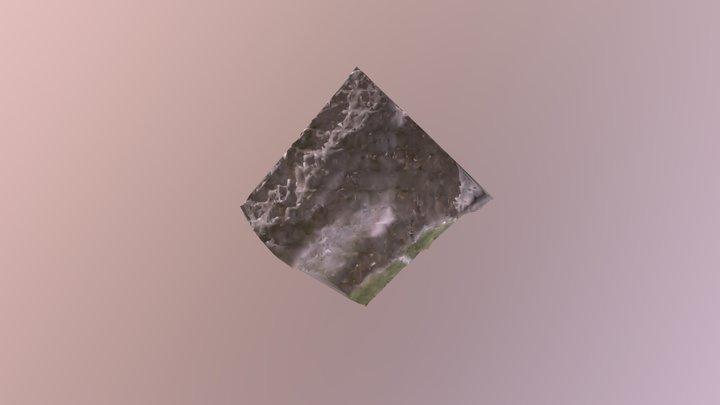 Tesout 3D Model